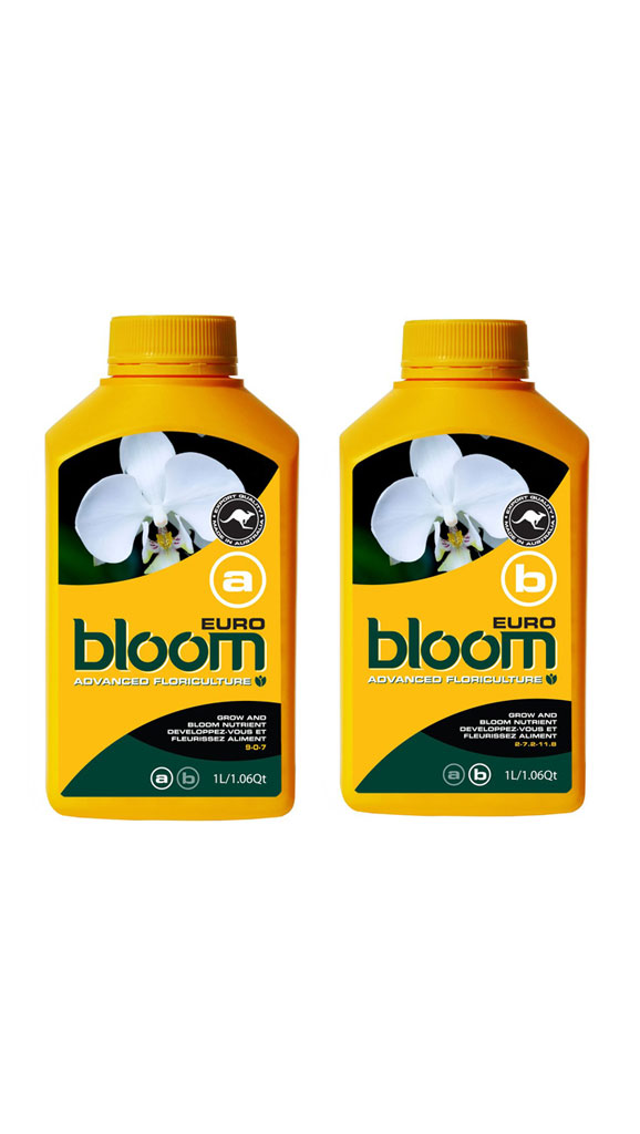 Bloom <span>Euro A & B</span>