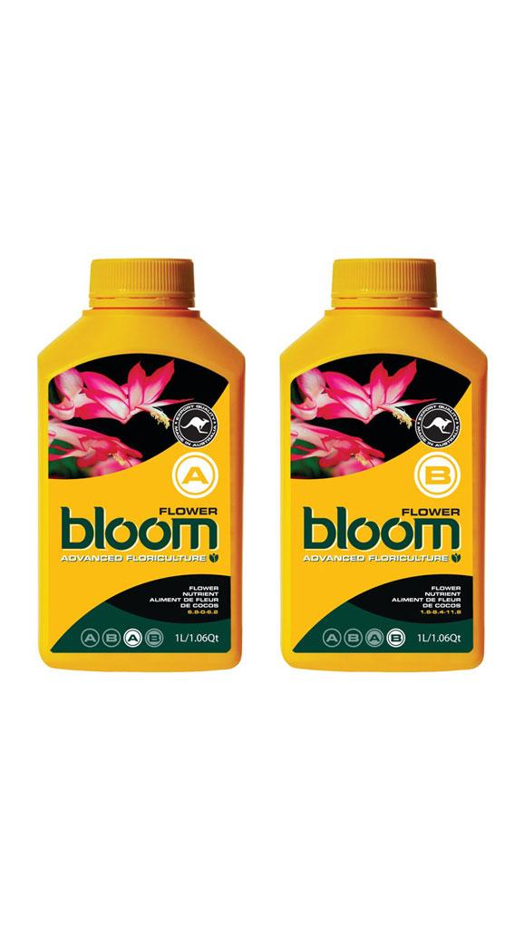 Bloom <span>Flower A & B</span>