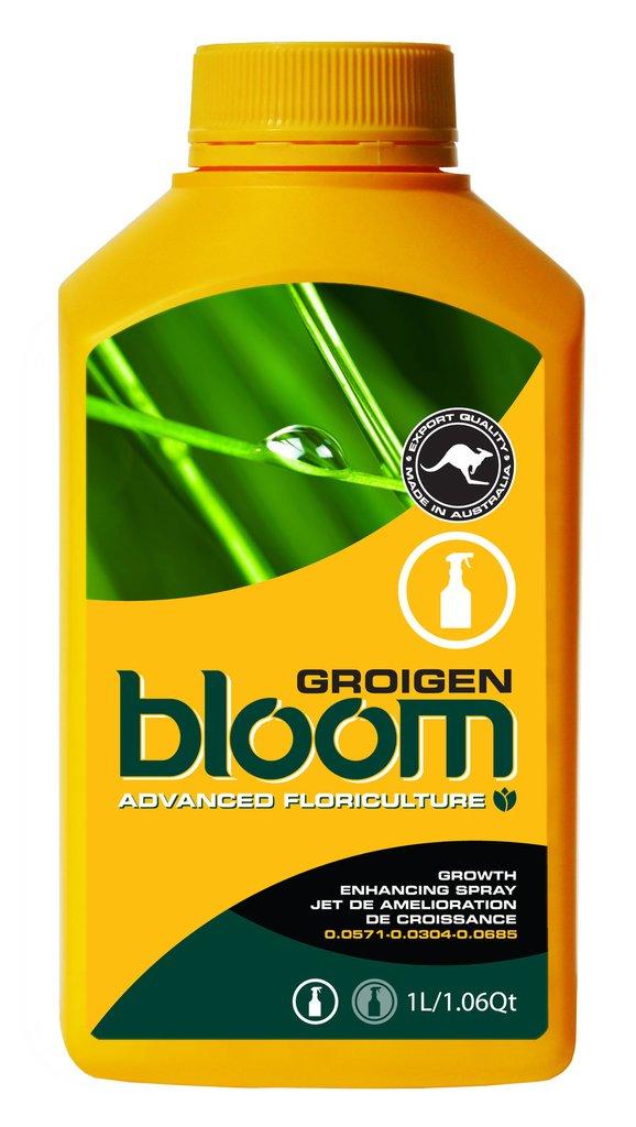 Bloom <span>Groigen</span>