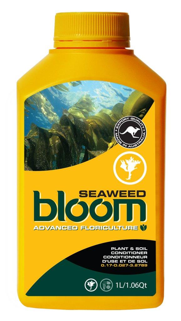 Bloom <span>Seaweed</span>